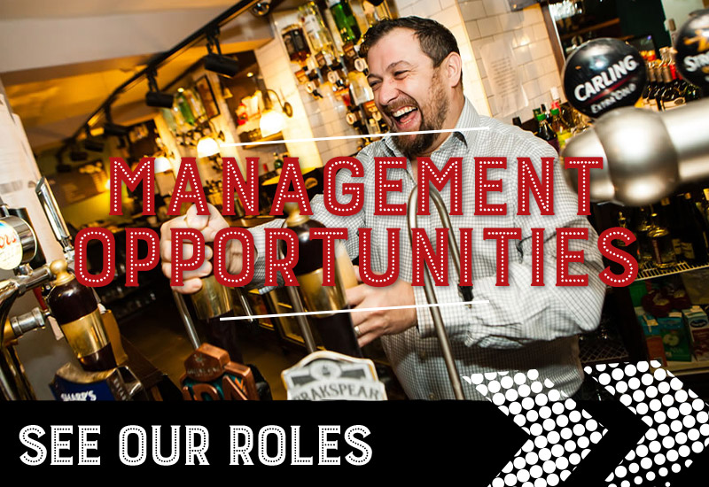 management opportunities at O'Neill's